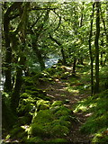 SH5922 : Path along Afon Ysgethin by Hansjoerg Lipp
