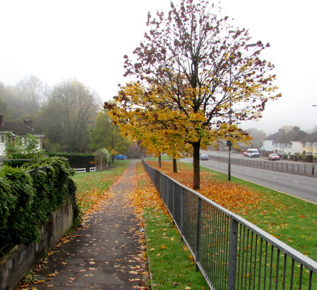 Autumn colours, Malpas, Newport