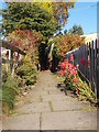 SE0238 : Footpath - Windsor Crescent by Betty Longbottom