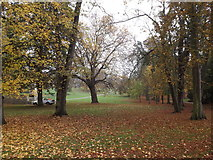 TM1644 : Christchurch Park, Ipswich by Adrian Cable