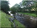 SD9771 : Looking upstream along the River Wharfe by Graham Robson