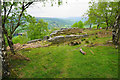 SK2476 : Rocks and birch trees on Froggatt Edge by Bill Boaden