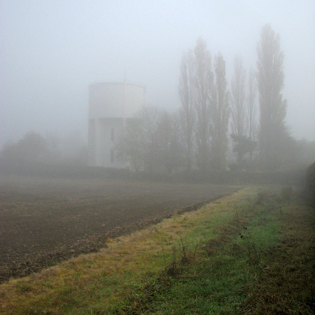 Great Gransden: water tower and poplars lost in mist