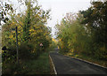 TL3157 : On Caxton Road in autumn by John Sutton