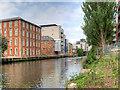 TG2407 : Norwich, River Wensum by David Dixon