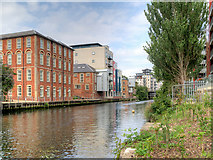 TG2407 : Norwich, River Wensum by David Dixon