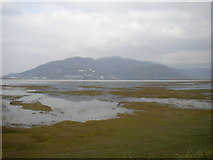 SH6214 : Mawddach estuary near Morfa Mawddach (1) by Richard Vince