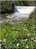 SJ8382 : Weir on the River Bollin at Quarry Bank Mill by Rod Allday