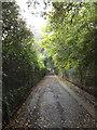 TM1645 : Bridle Way, Ipswich by Geographer