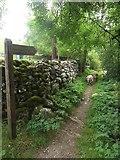 SD9772 : Footpath to Hag Dyke by Graham Robson