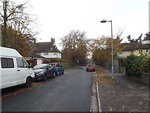 TM1645 : Elsmere Road, Castle Hill Ipswich by Adrian Cable