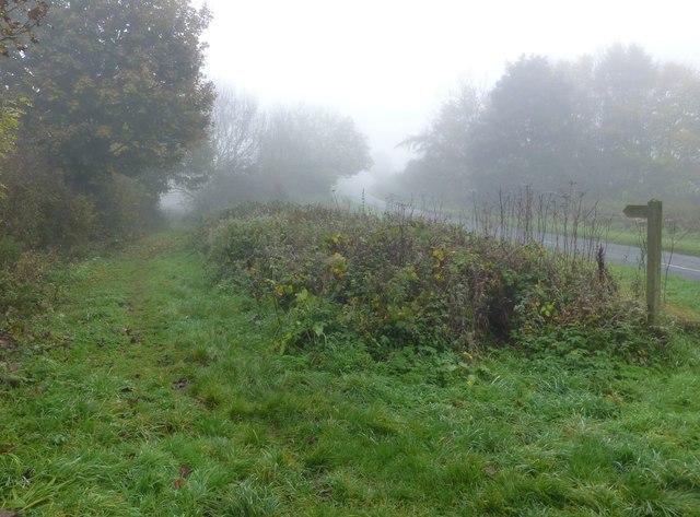 Footpath to Bothal