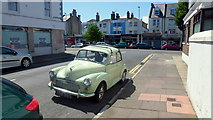 TV6199 : Moggie at the Seaside by Jonathan Billinger