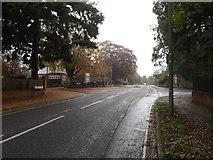 TM1645 : Henley Road, Castle Hill, Ipswich by Adrian Cable