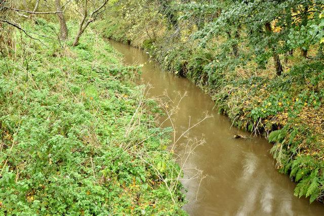The Knock River, Belfast - November 2015(1)