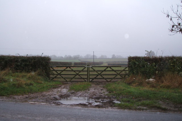 Field entrance off the A67