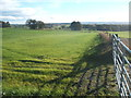 NZ0818 : Farmland and hedgerow by JThomas