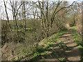 TL6558 : Devil's Ditch by Hugh Venables