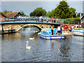 TG3018 : River Bure, Wroxham Bridge by David Dixon