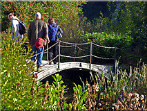 ST7733 : Stourhead Gardens - the Iron Bridge by Chris Allen