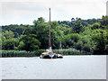 TG3016 : Wherry on Wroxham Broad by David Dixon