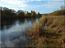 NS3977 : The River Leven from opposite Dalquhurn Point by Lairich Rig