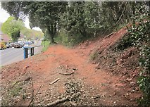 SX9065 : Plant access, Chapel Hill Pleasure Grounds by Derek Harper