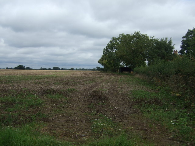 Farmland and hedgerow, Short Green