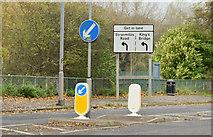 J3371 : Traffic island, Annadale, Belfast (November 2015) by Albert Bridge