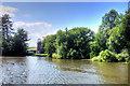 TG3217 : River Bure near Didler's Mill by David Dixon
