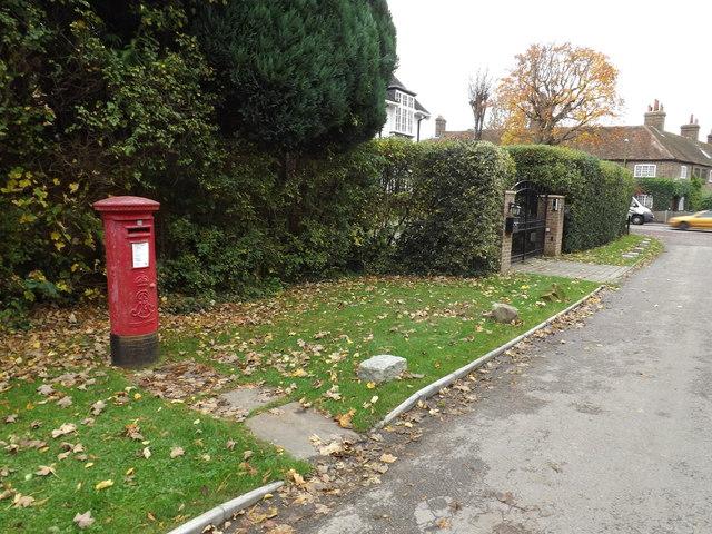Hatching Green Edward VII Postbox