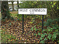 TL1312 : West Common sign by Adrian Cable