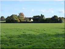 SX9499 : Field and thatched cottage west of Rewe by David Smith