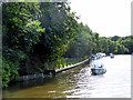 TG3115 : Moorings on River Bure near Salhouse Broad by David Dixon