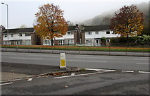 ST3090 : Late autumn view of houses on the east side of Malpas Road, Newport by Jaggery
