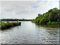TG3117 : River Bure, The Northern Entrance to Wroxham Broad by David Dixon