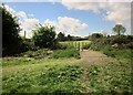ST6177 : Stoke Park by Derek Harper