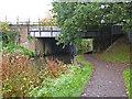 ST2325 : Bridgwater & Taunton Canal - Bridge No. 35 by Chris Allen