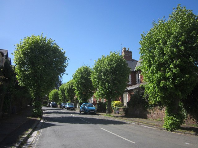 Walnut Road, Chelston