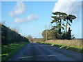 TL3843 : New Road nearing Melbourn by Robin Webster