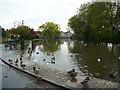 SK5992 : Millpond, Castlegate, Tickhill by Humphrey Bolton