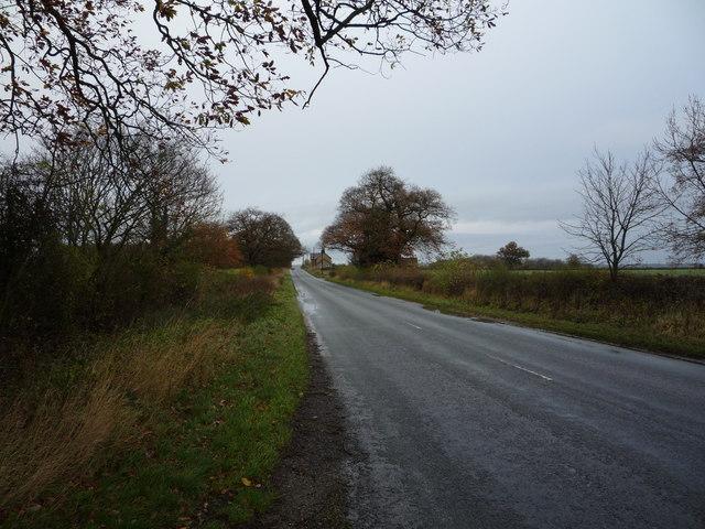 B6275 towards Piercebridge