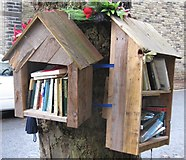 SD9927 : A library on a tree? by Dave Pickersgill