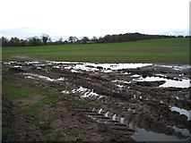 NZ2506 : Muddy field near Home Farm by JThomas
