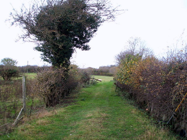 Field entrance off Kneeton Lane