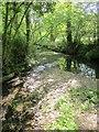 SX8390 : Sowton Brook at Shepherd's Ford by Derek Harper