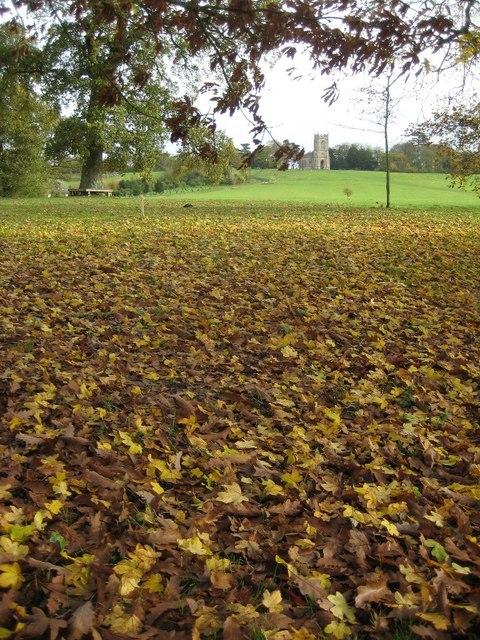 Autumn leaf fall in Croome Park