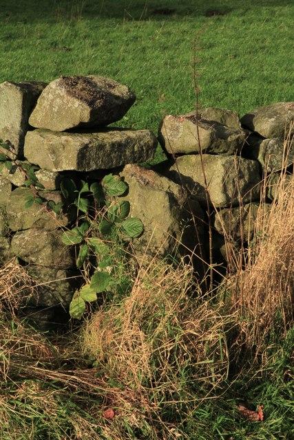 Guide Stone (close up); Thornthwaite Parish