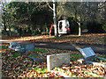 TG2008 : A path in Earlham cemetery by Evelyn Simak