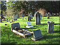 TG2008 : Graves in Earlham cemetery by Evelyn Simak
